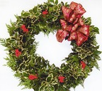 Making holly wreaths