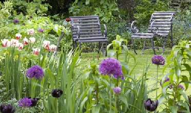 Gardening jobs in May